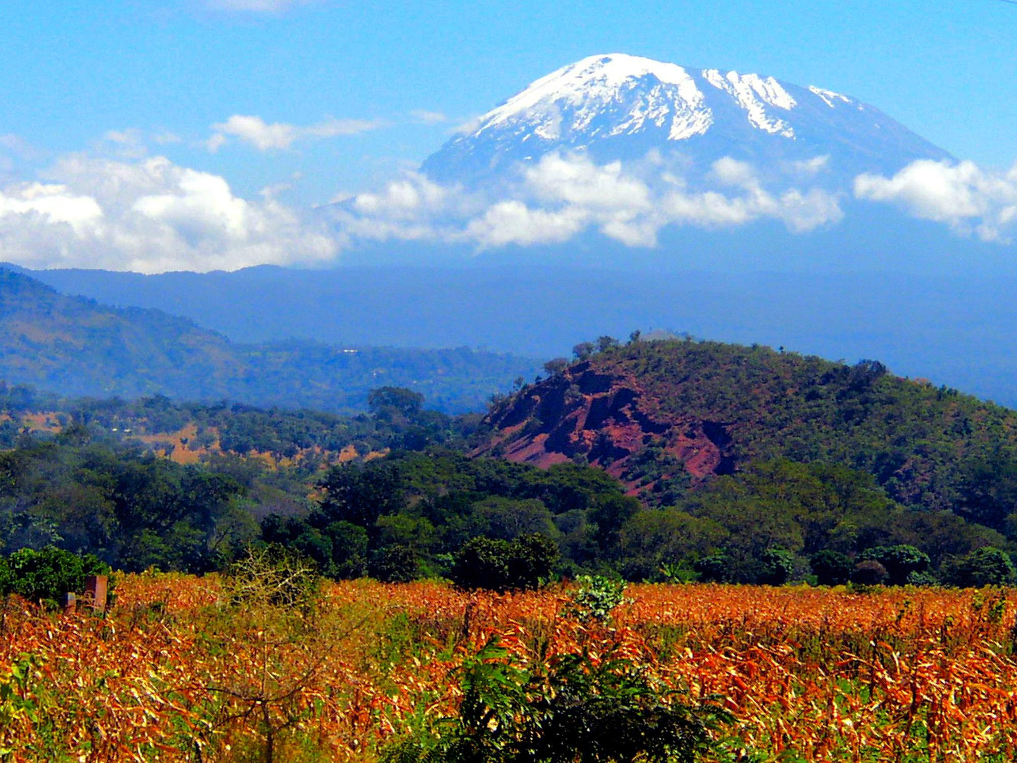Ascension du Kilimanjaro par la voie Machame
