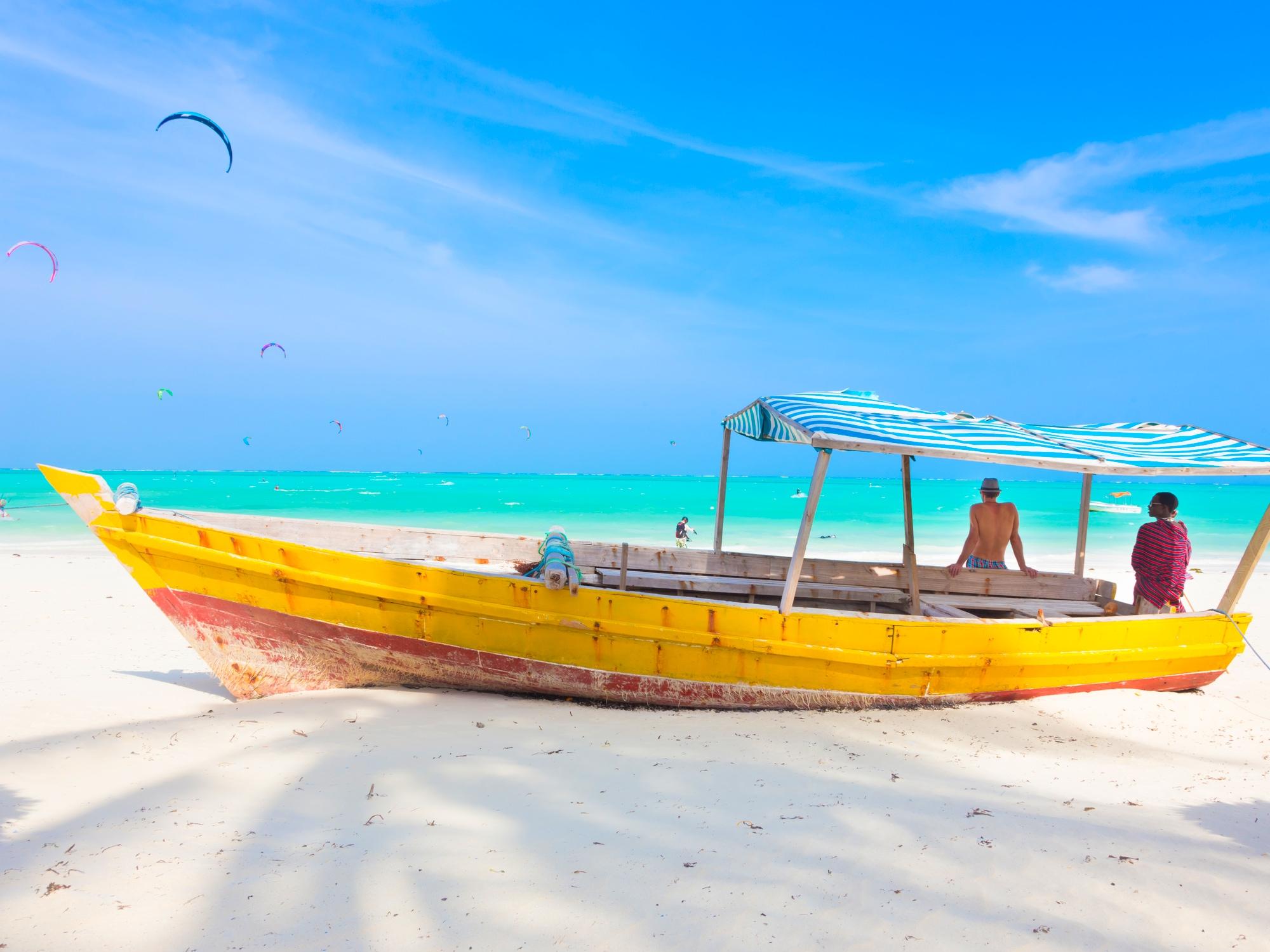 Premier Pas en Tanzanie, terre fauve et Zanzibar