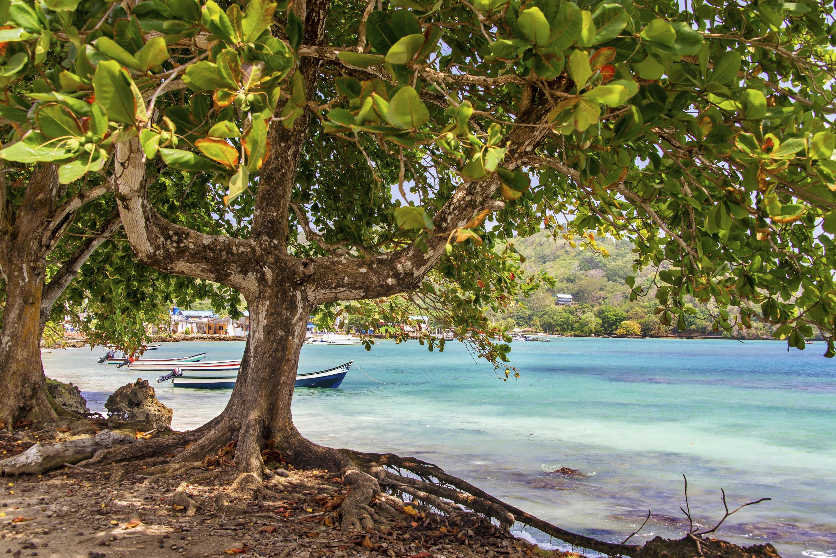 Passionnément Panama