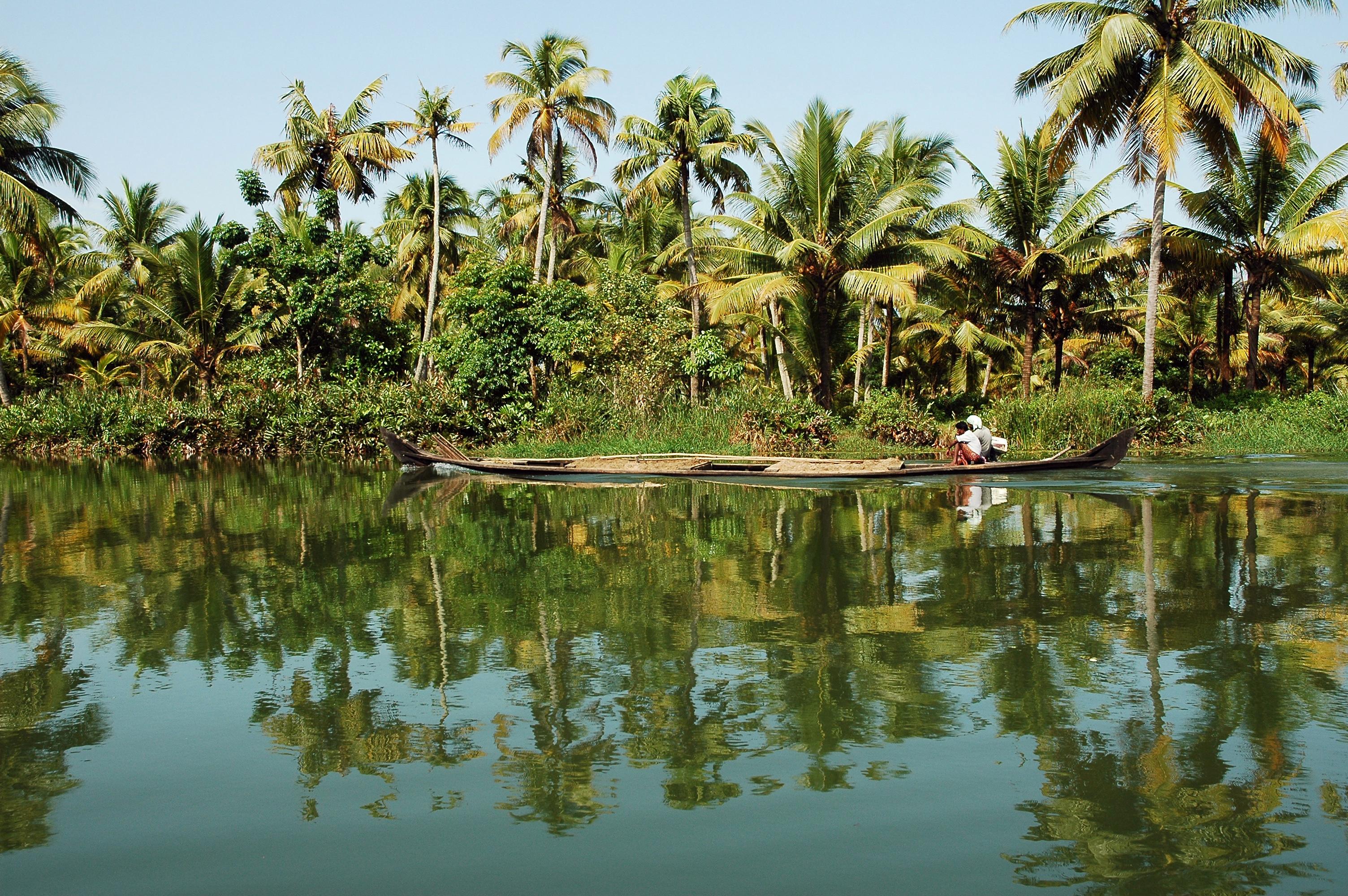 Pause bien-être au Kerala