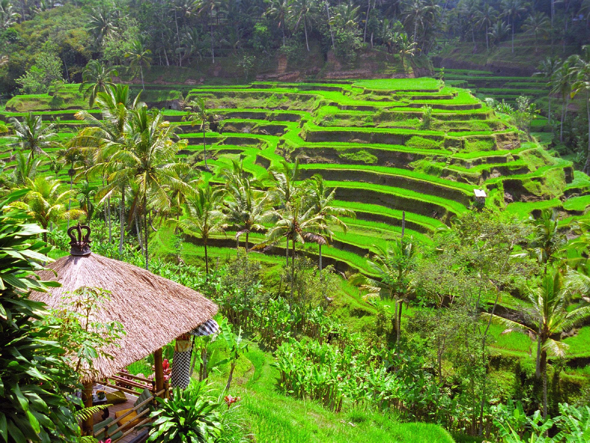 Idylle à Bali