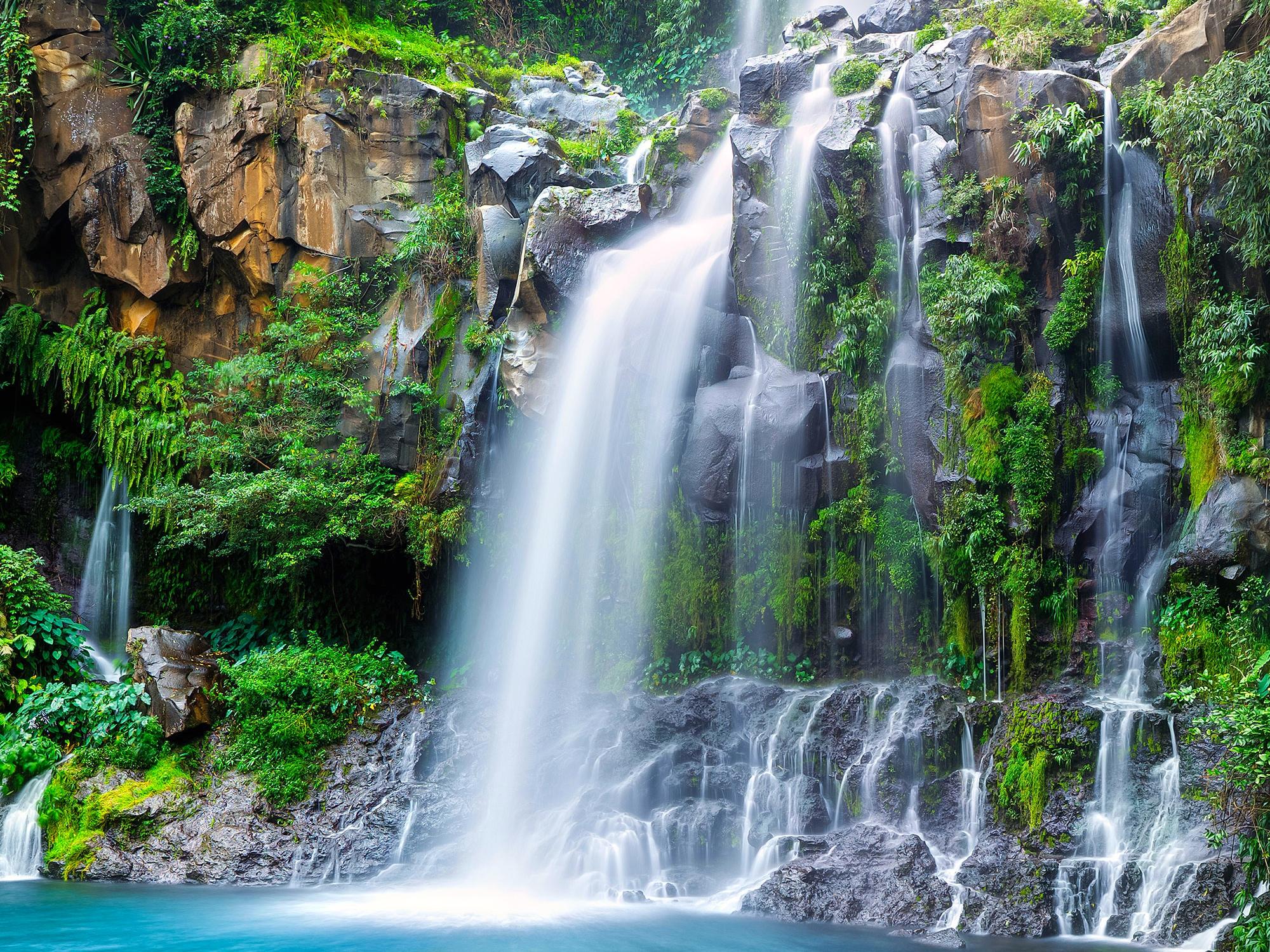 La Polynésie Grandeur Nature