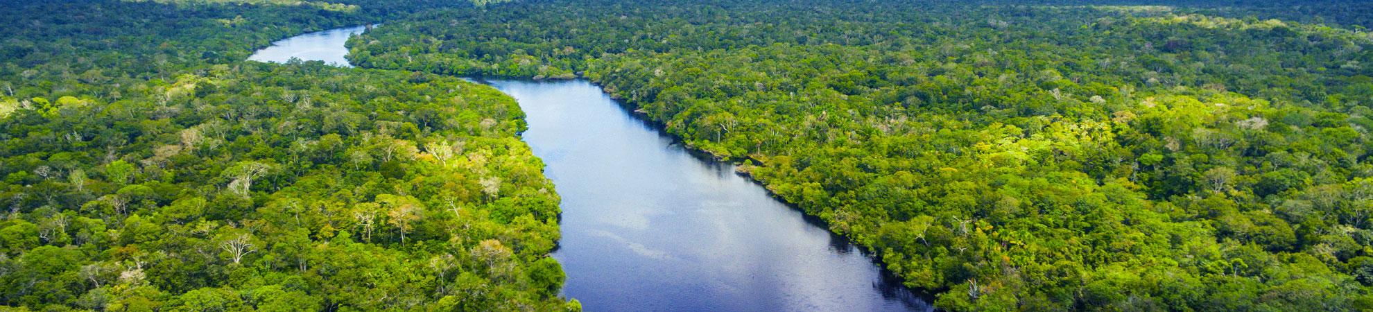 Paysages du Brésil