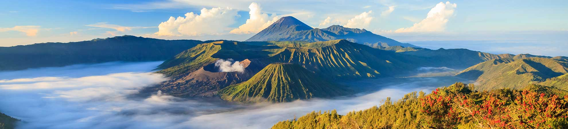 Quand partir en Indonésie