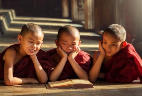 Héritage Birman