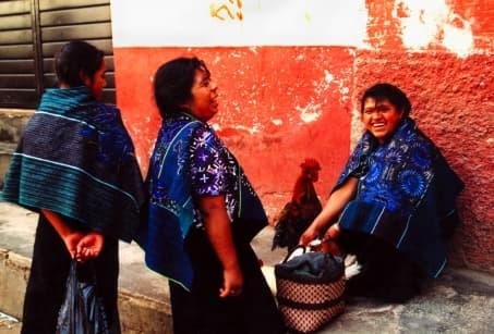 Echappée au coeur du Chiapas