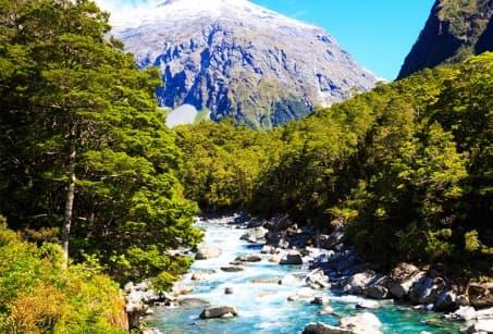 Sur les sentiers de Nouvelle Zélande