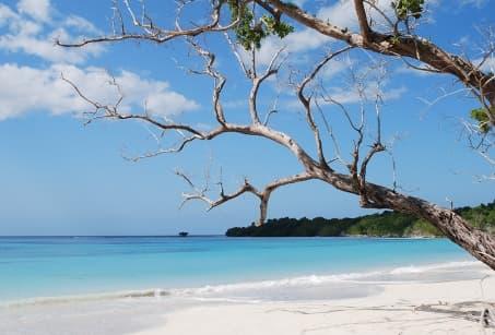 Paradis en Jamaique