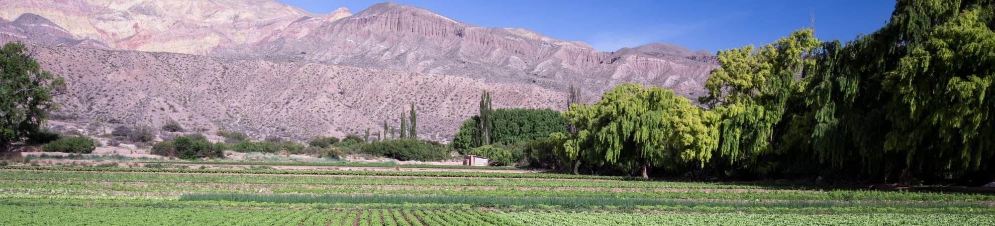 La Pampa en Argentine