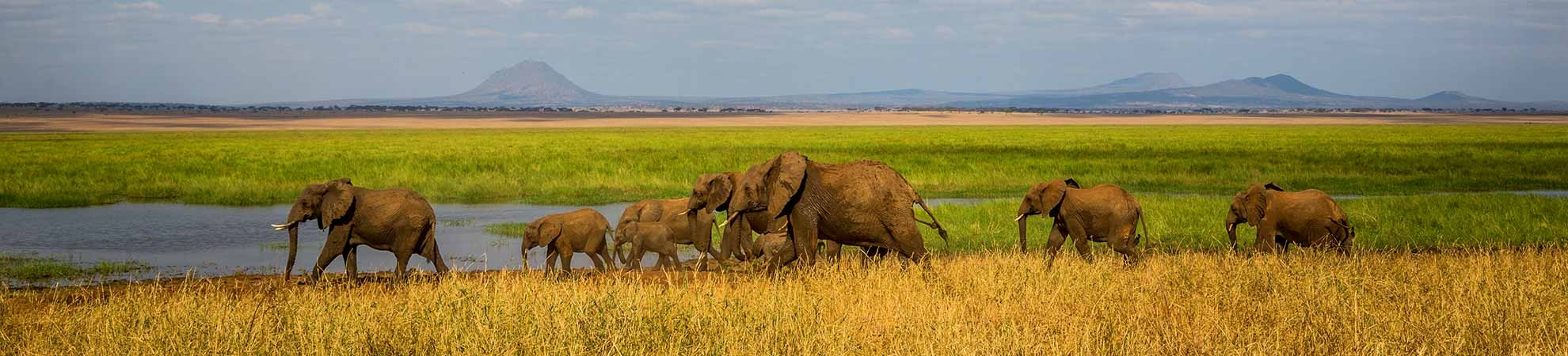 Voyage Tanzanie