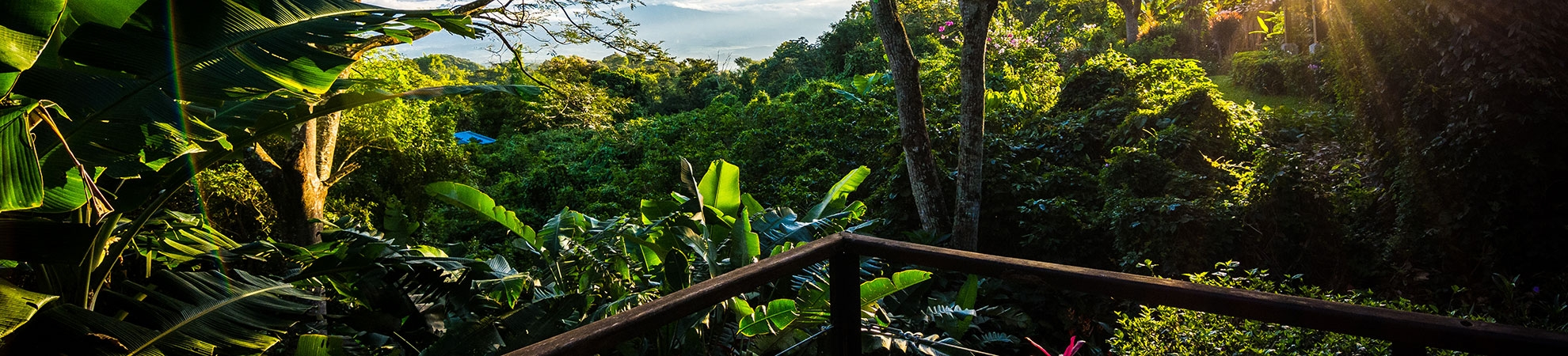 Voyage Pacuare - Costa Rica