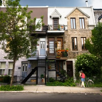 Le Plateau Mont Royal