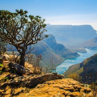 La découverte du Blyde River Canyon