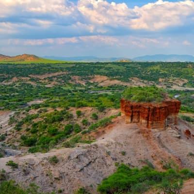 Le musée d'Olduvai