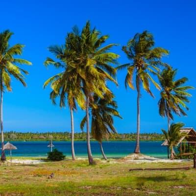 Mafia Island :  calme et tranquillité