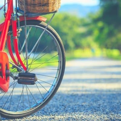 Découverte de Kyoto à bicyclette
