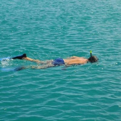 Snorkelling sur la barrière de corail