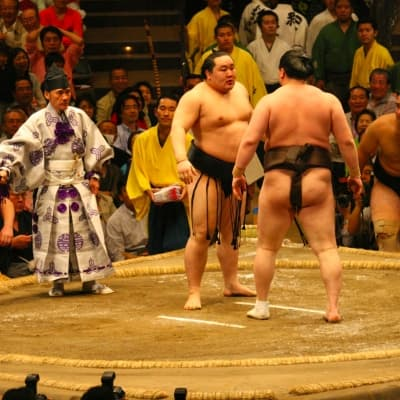 Assistez à un match de sumos à Tokyo
