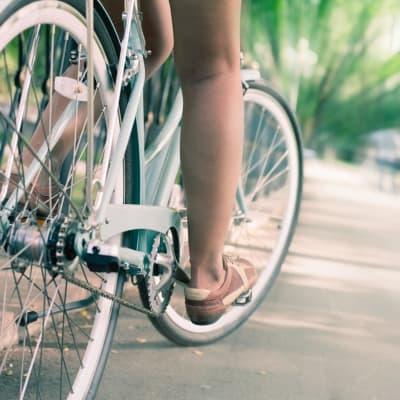 Demi-journée de découverte de Kyoto à bicyclette