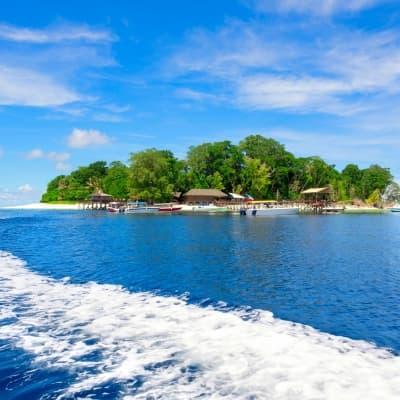 Excursion en bateau sur l'île de Pulau Dayang Bunting