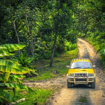 Safari 4x4 de l'intérieur de l'île