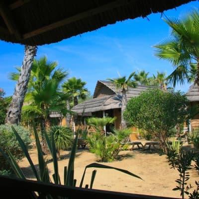 Visite guidée et dîner spectacle au Tiki Village