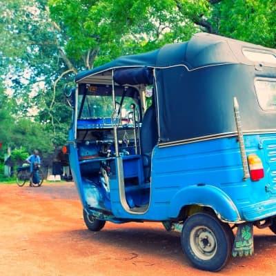 Tour de Kandy en tuk tuk