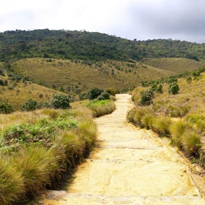 Trek à Horton Plains