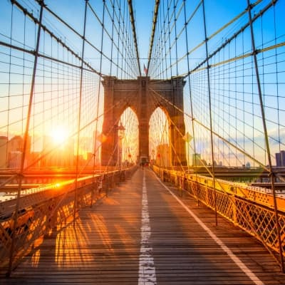 Tour privatif de Manhattan, Brooklyn & Harlem (réservable par nos soins)