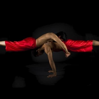 Le cirque PHARE, des performances inédites