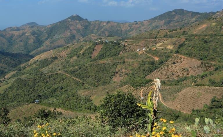 Paysages verdoyants de Kalaw