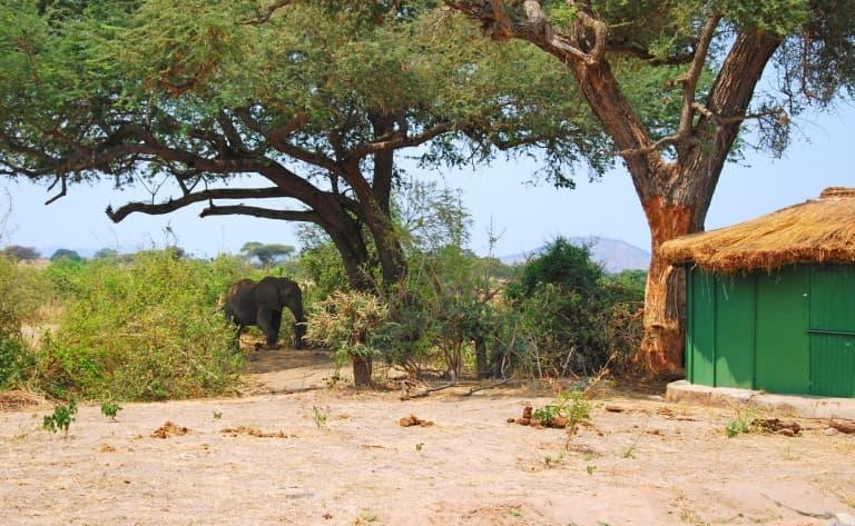 Visite de villages à Ruaha