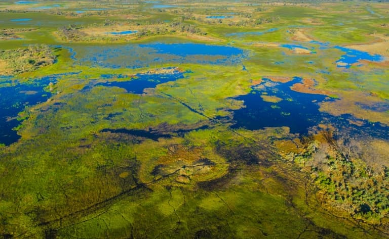 1ère journée de découverte de l'Okavango