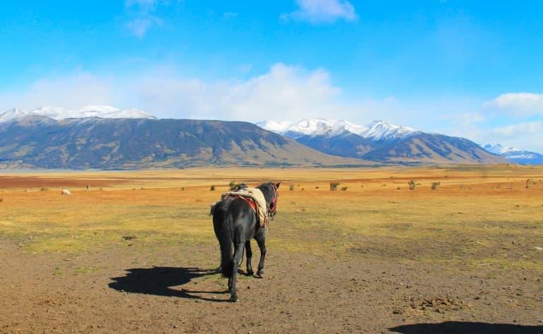 Lago Argentino à cheval