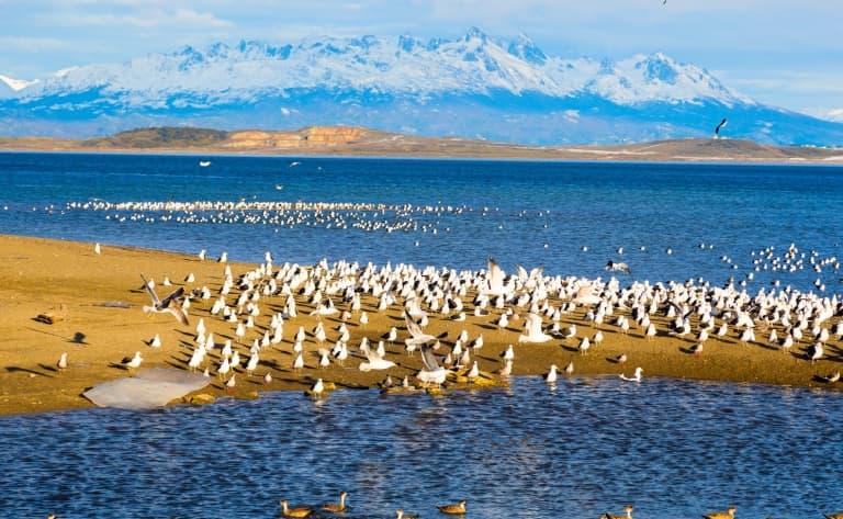 Ushuaïa et le Canal de Beagle en hélico