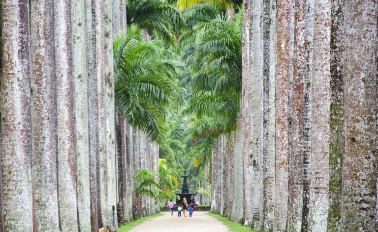 Du jardin botanique aux quartiers historiques