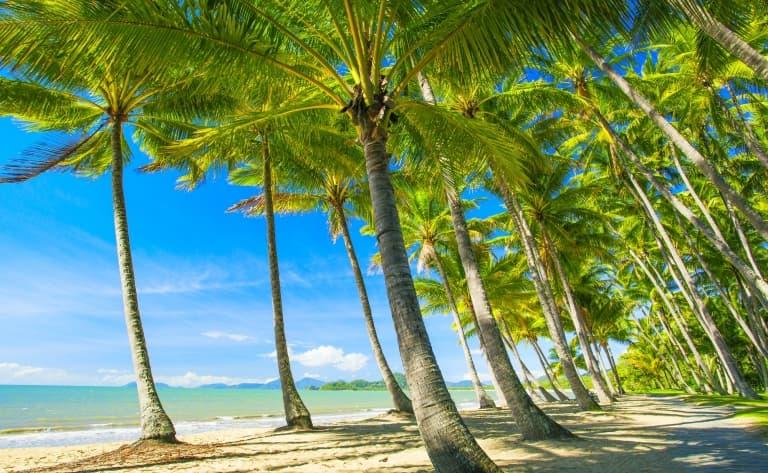 Journée libre de découverte de Cairns et sa région