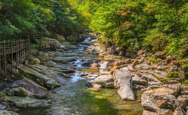Exploration du parc de Jirisan