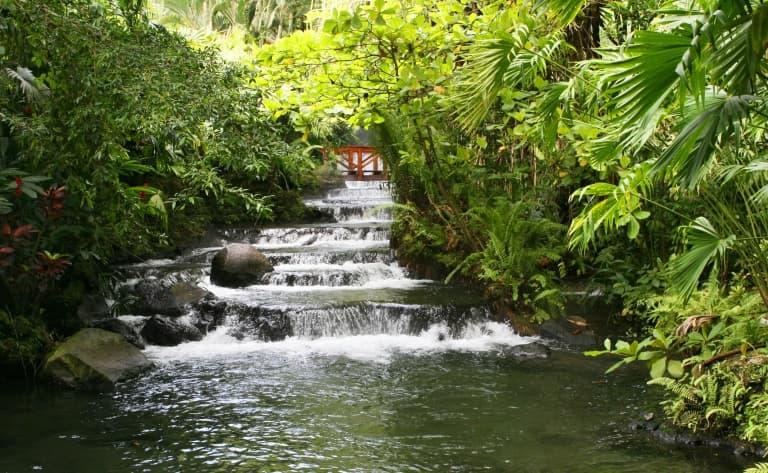 Geysers et sources chaudes dans la jungle !