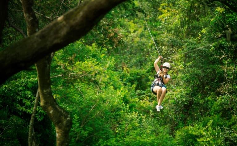 La jungle et la côte sauvage de Manuel Antonio
