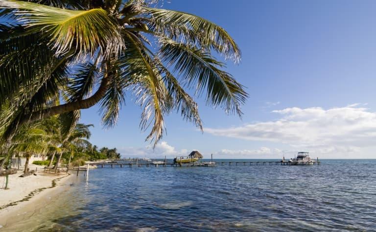 Un rêve sous les tropiques !
