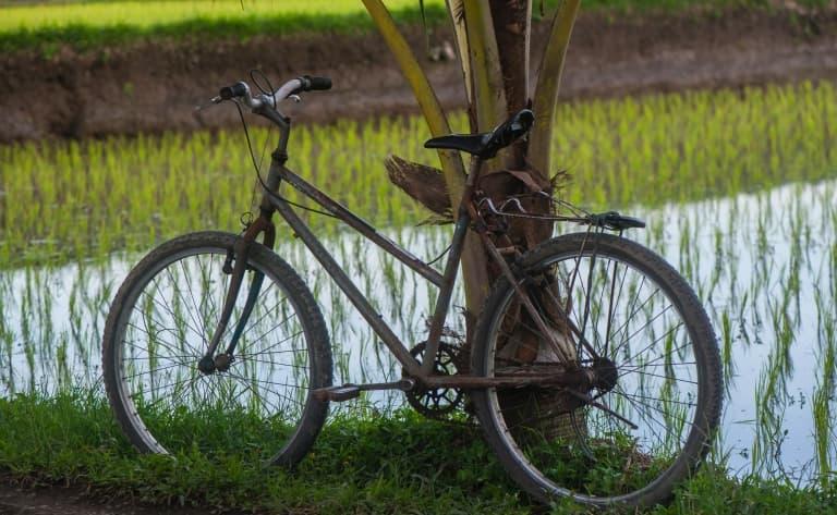 Vélo Ubud