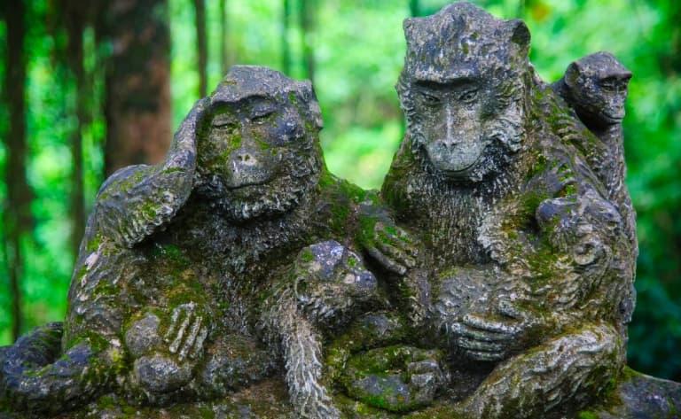 Danses du Kriss et du Barong, artisans, palais royal et forêt des singes