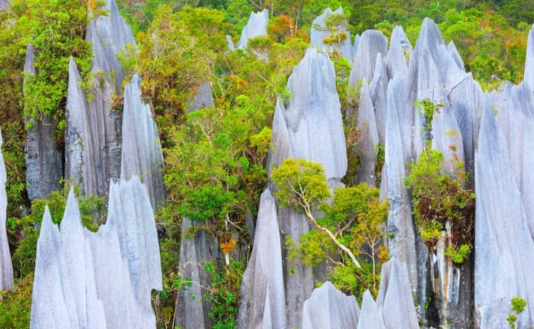 Le Parc National de Mulu