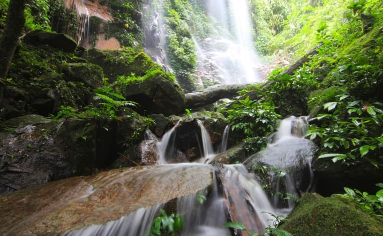Jungle et Orang Asli de Belum