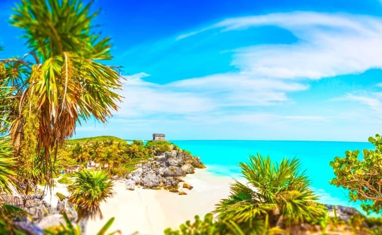 Nage avec les dauphins sur la Riviera Maya