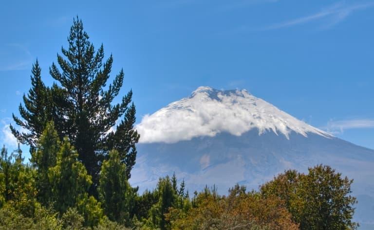 Sur les flans du volcan Cotopaxi