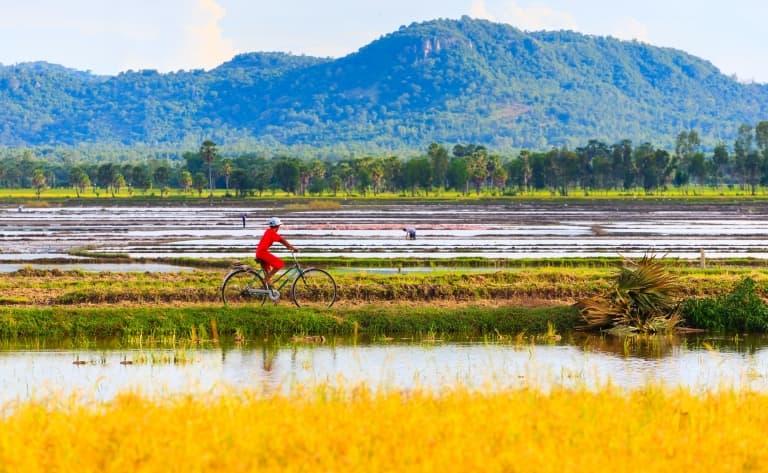 Vélo jusqu'à Luong Son