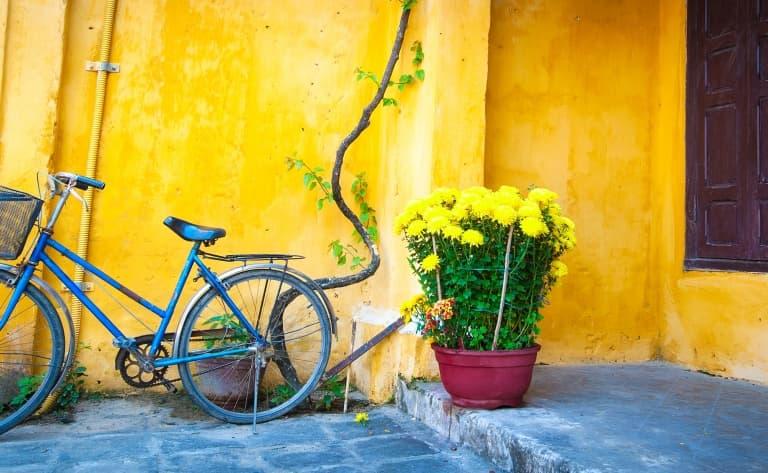 Vélo jusqu'à Tra Que