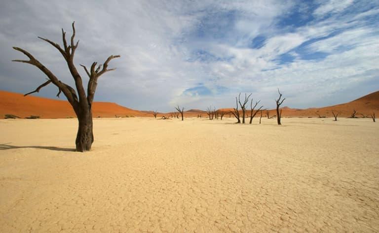 Rêve de Dunes : Sossusvlei